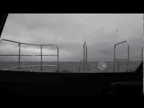 St Kilda Cruises Tuna Hunt