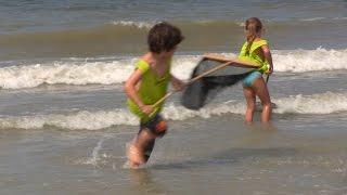 Sleepnetvissen bij Moio Beach Cadzand | KikkeTV