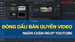 Cách đóng dấu bản quyền video ngăn chặn Reup YouTube