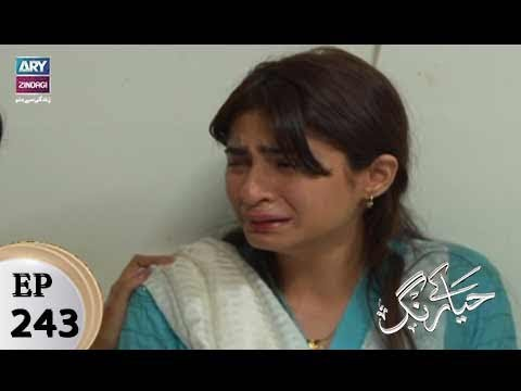 Haya Kay Rang - Episode 243 - 22nd February 2018