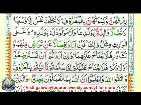 Learn Quran With Tajweed #2 Al Baqarah Ayah 232 To 234 Para 2
