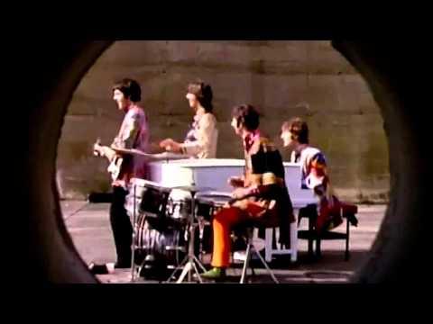 Top 10 Beatles Animal Songs