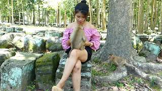 Cute Baby monkey playing with pretty girl looking so funny and lovely
