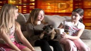 Does Briana's Teacup Yorkie Poo Puppy Dog Fit In A Cup