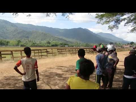 Local children's horse races in Sumbawa (Indonesia)