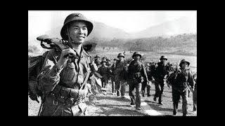 Tình ca (Có lời) Nhạc cách mạng bất hủ Hoàng Việt Kiều Hưng