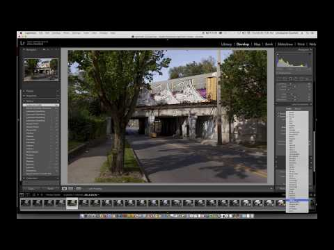 "Editing a Photo in Lightroom - ""Graffiti Dog Train"" - Start To Finish"