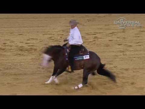 USA wins Reining in Equestrian Games - Universal Sports