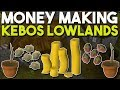 I Stayed Up All Night to Try this Kebos Money Making Method! Oldschool Runescape Money Making [OSRS]