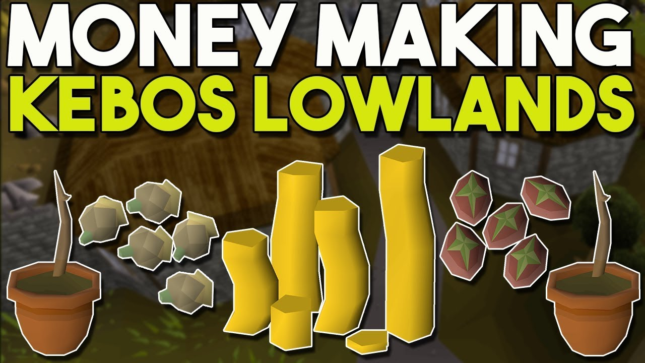 I Stayed Up All Night to Try this Kebos Money Making Method