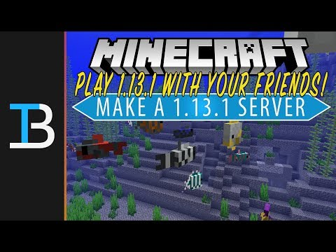 How To Start A Minecraft 1.13.1 Server (Make A Minecraft Server in 1.13.1 & Play w/ Your Friends!)