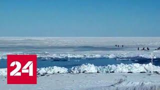 Льдину с сотнями рыбаков оторвало от берега на Сахалине - Россия 24