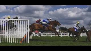 Race- Wincanton