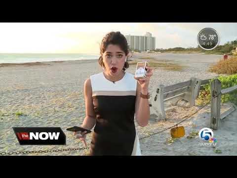 Deuce - Proposed Ban On Smoking On All Florida Beaches