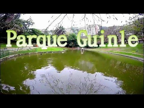 Conhecendo o Parque Guinle - Laranjeiras - RJ