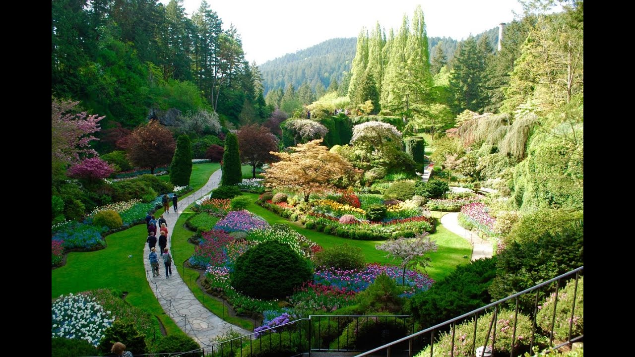 The Most Amazing Garden In Canada The Butchart Gardens