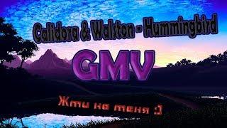 [GMV] Calidora & Walston - Hummingbird