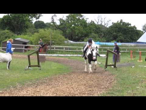 Chase Me Charlie @ Mill Green 6th July 2014