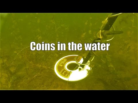 Free MONEY!!! Hunting Coins metaldetecting unther water with the Tesoro Tiger Shark