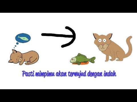 Video Lirik Pelangi - Teenebelle