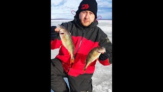 Рыбалка выходного дня на реке Косьва 14 03 2020