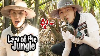 Ha Sung Woon is The Little Kim Byung Man! [Law of the Jungle Ep 327]