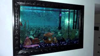 Leslie Jr In-wall Aquarium Project