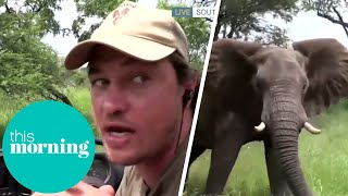 Elephant Sneaks Up on Camera Crew During Live South African Safari   This Morning