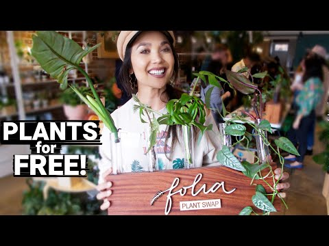 Plants for FREE!   First PLANT SWAP of 2020!