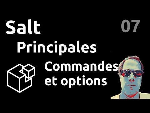 Principales commandes & options - #Salt 07