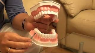 Как правильно чистить зубы. Видеоурок №3