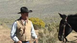Josh Foster, the man Tom Dorrance refused to work with (Mule Trainer, Horse Trainer)