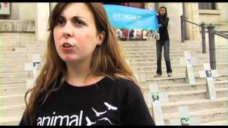 AnimalEqualityISS5.mov
