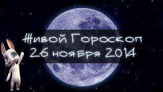 Зайка Zoobe - гороскоп для ВОДОЛЕЕВ ♒. + Свежий прикол!