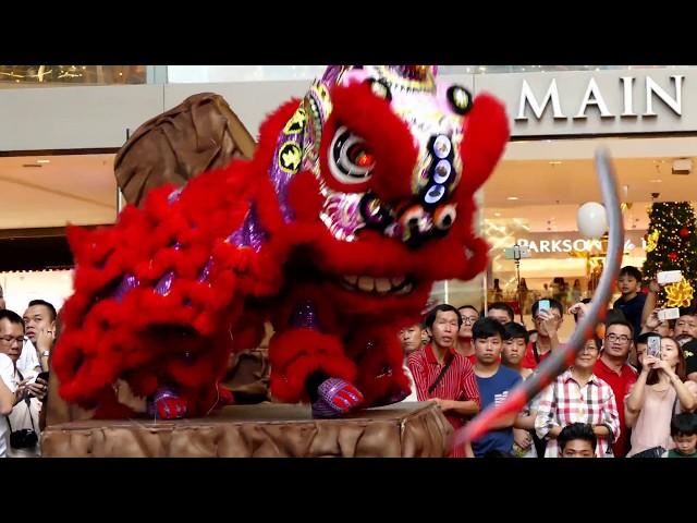 World Dragon & Lion Dance Day 2018 (Malaysia) Lion Dance - Rawang Xuan Long?????(?????) ???? A? ????