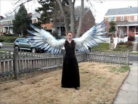 Alcyone arm wings