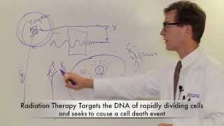 Brain Tumors 101: Radiation Therapy for the Brain Tumor Patient