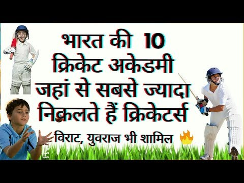 TOP 10 CRICKET ACADEMY IN INDIA || HINDI