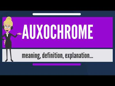 What is AUXOCHROME? What does AUXOCHROME mean? AUXOCHROME meaning, definition & explanation