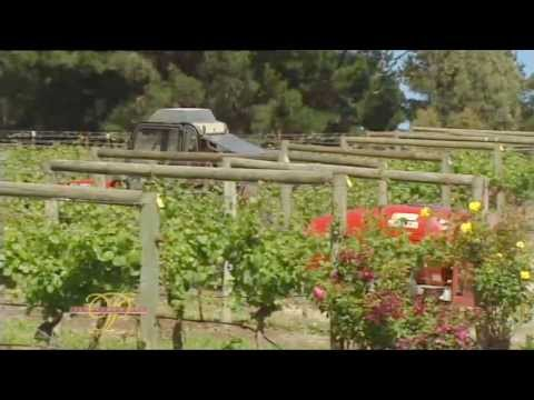 Panorama Wines - presented by Nick Bond - Harcourts Huon Valley