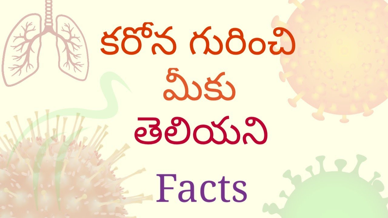 Facts about carona virus ..|| sktechnologies|| in telugu