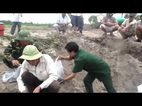 Nhà ngoại cảm phan ngọc sáu tìm mộ liệt sĩ