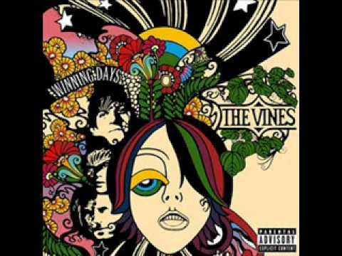 Клип The Vines - TV Pro