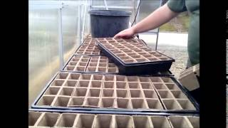 Diy Planting Vegetable / Veggie Seeds Germinating In The Green House  Greenhouse