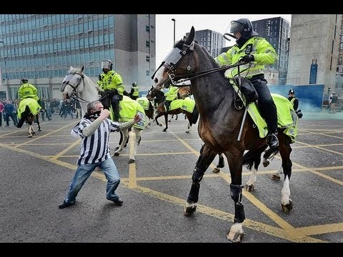 Thumbnail: Newcastle Fan Punches A Horse