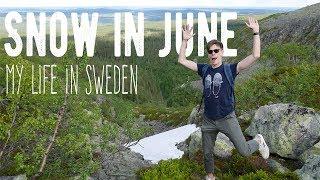 My Life in Sweden #3 - Snow in June! (Fulufjället, Njupeskärs Vattenfall)