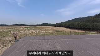 천연기념물 제431호 태안 신두리 해안사구
