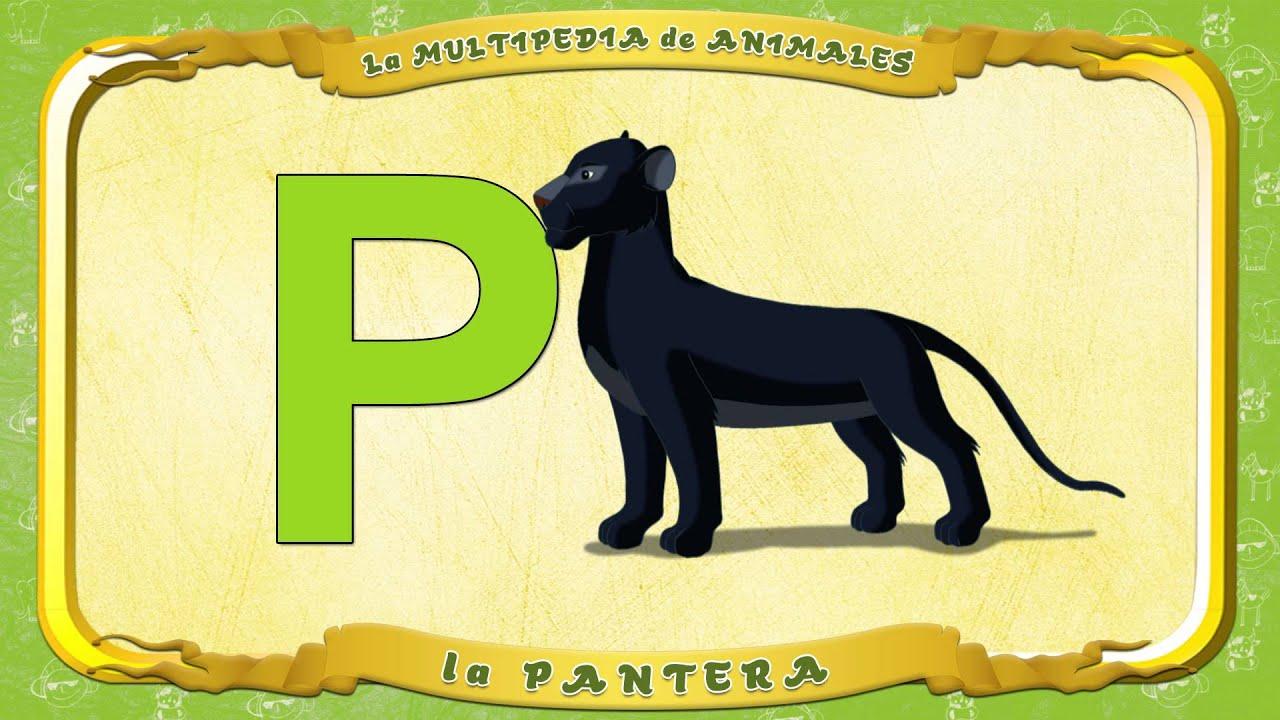La multipedia de animales letra p la pantera youtube for Pianta con la p