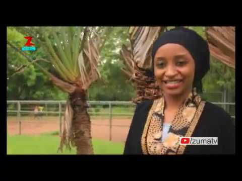 Download Zuma Music | Hadin Allah 2 | New Kannywood Song | New Hausa Song