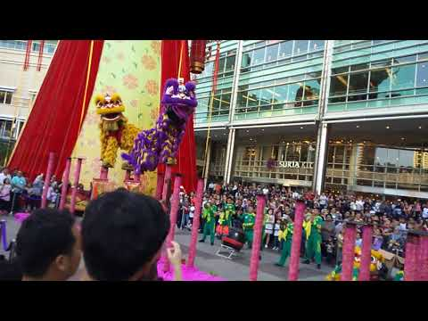 Amazing Lion Dance at Suria KLCC.